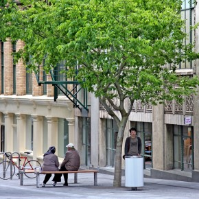 Auckland's Shared Spaces